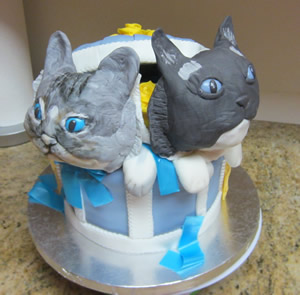 Rag Doll Cats in a Hat Box Cake